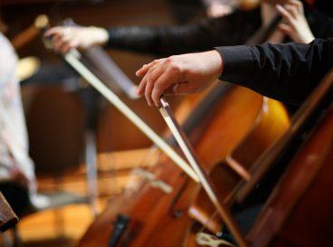 Photo de violoncelle