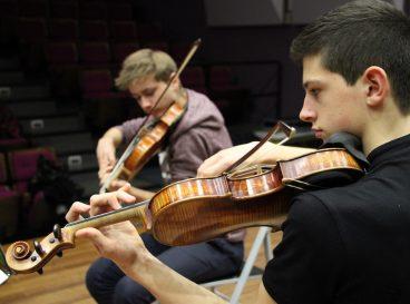 Elves violonistes