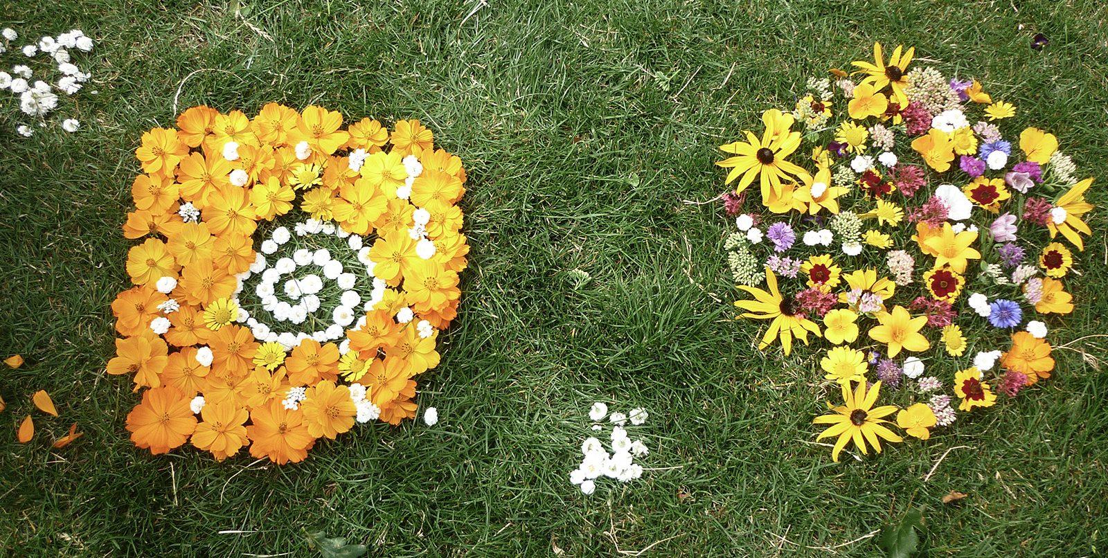 Fête de la nature - Par terre de fleurs