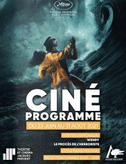 Programme cinéma - Été 2021